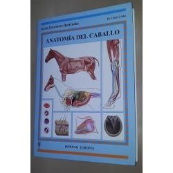 LIBRO ANATOMÍA DEL CABALLO